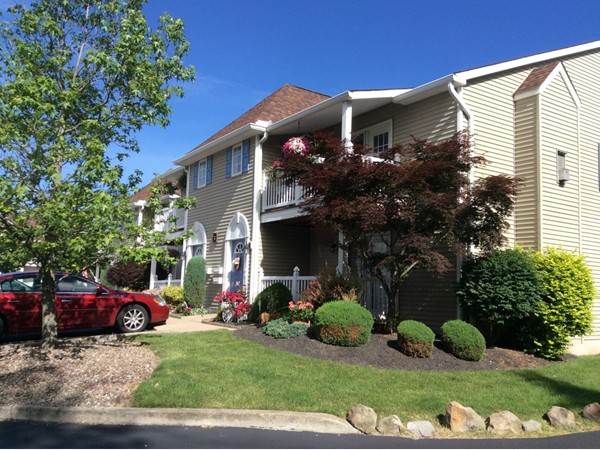 Located off William in Cheektowaga, upper or lower units with two bedroom