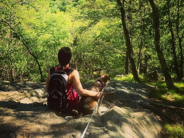 Granite Mountain Preserve is a wonderful local hike offering a great workout
