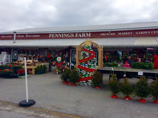 Pennings Farms