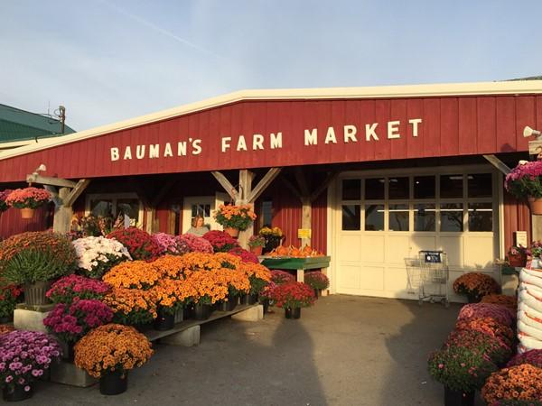Bauman's Farm Market