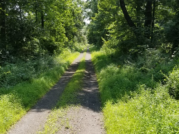Hike on the gravel roads or bike in the forest. What a fantastic place here in the Hudson Valley