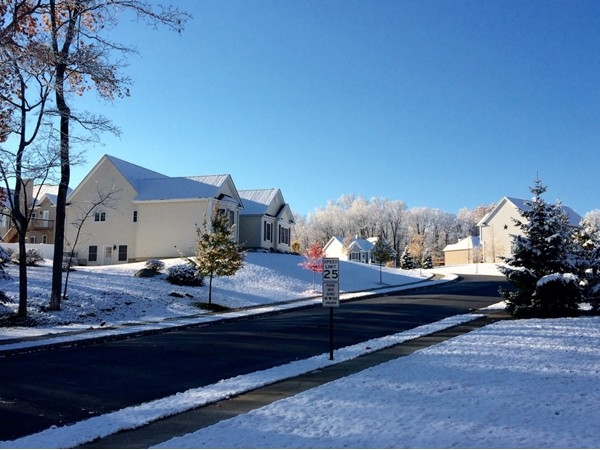 First snowfall of the year in Briarcliffe Estates