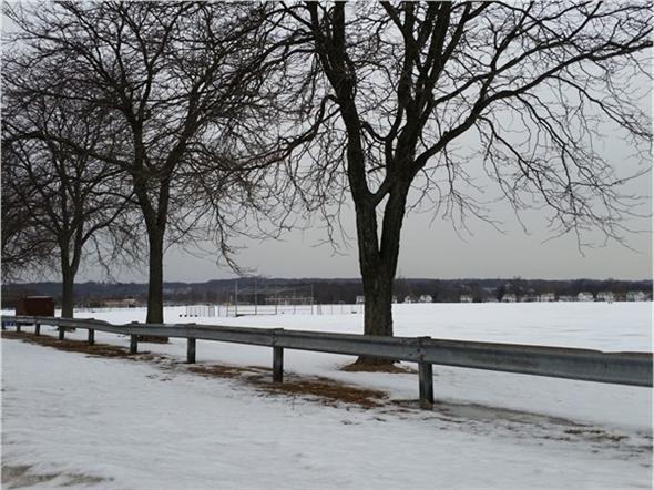 Morning at Miller Field Park