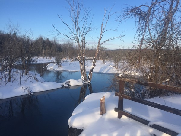 Beautiful trails for winter snowshoe or cross country skiing abound in Cazenovia