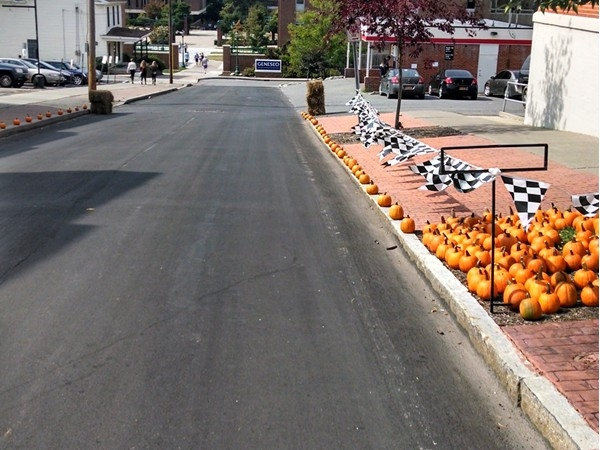The Great Pumpkin Race track