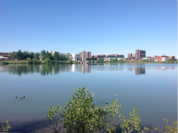 Looks like a mini-city. UB North campus