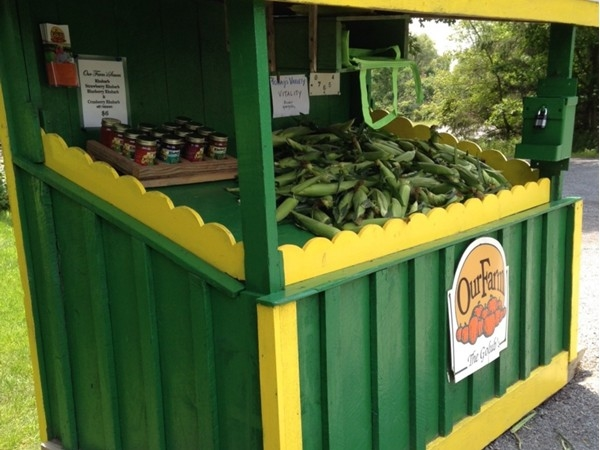 Roadside stand at Old Farm on Peth Rd in Manlius