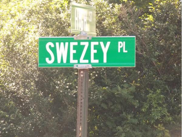 Swezey Place, Monroe, NY