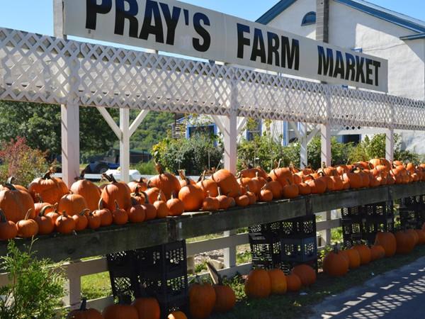 Pray's Family Farms is ready for Halloween, just stop by and pick out your pumpkin!