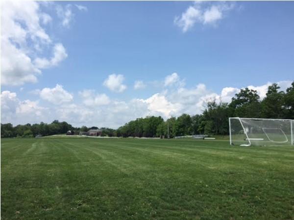 Soccer fields!
