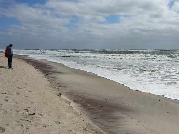 Watching the tide come in from Hurricane Joaquin at Robert Moses State Park