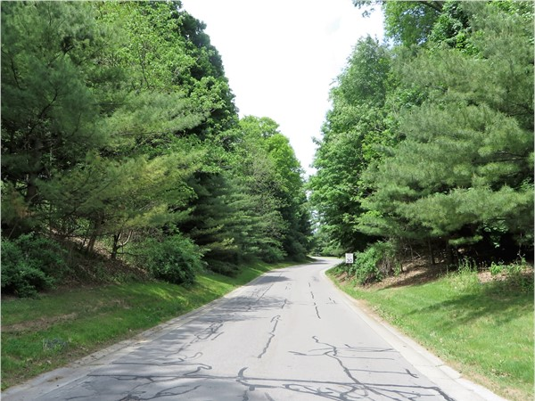 Road into Beaumont Estates off Turk Hill Road in Perinton