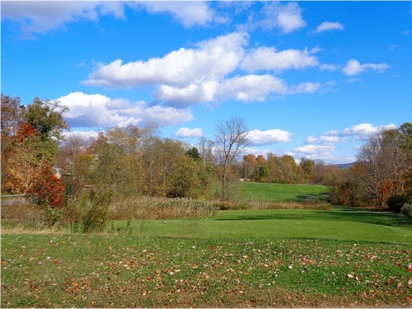 Experience beautiful mountain and golf course views in this subdivision