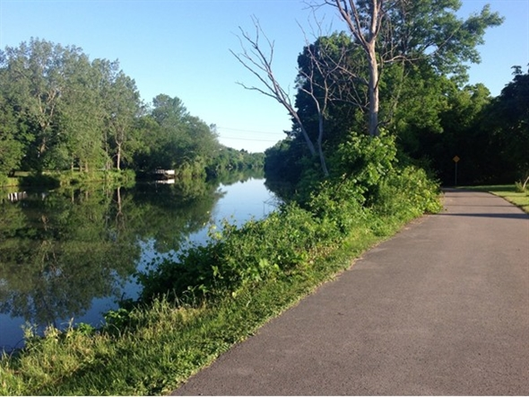 A serene and peaceful section of the waterside bike path that takes you from Amherst to Buffalo!