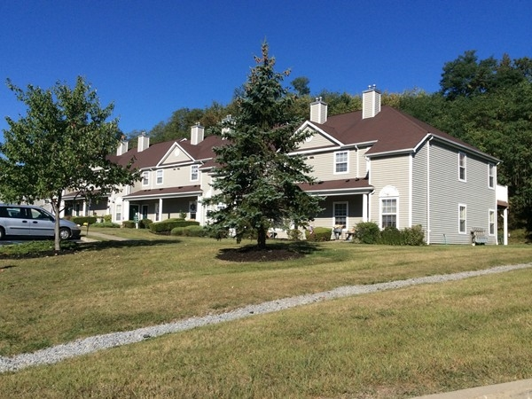 Pine Ridge townhouses behind Stop and Shop