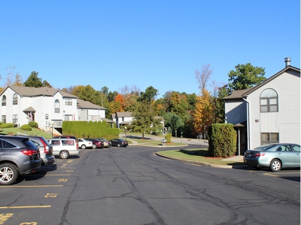 A nice street view of Timber Hills