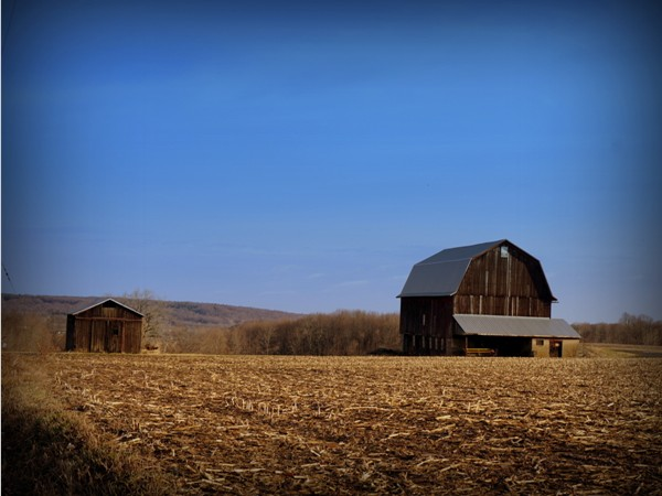 Regardless of the season or the weather, this barn on Bennetts Corners Road is always beautiful