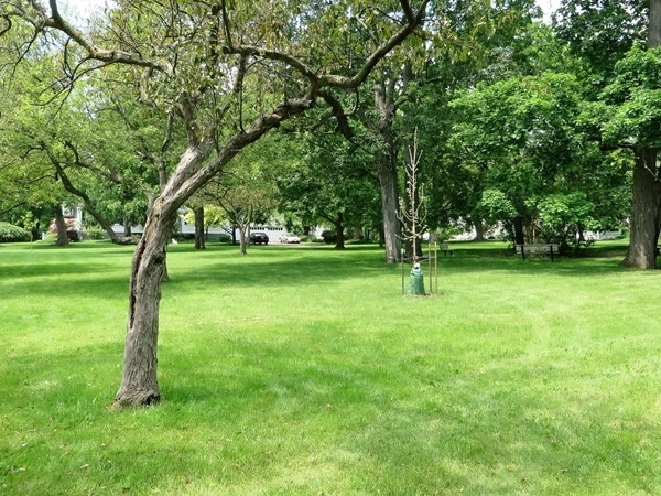 Small park off historic Gibson Street