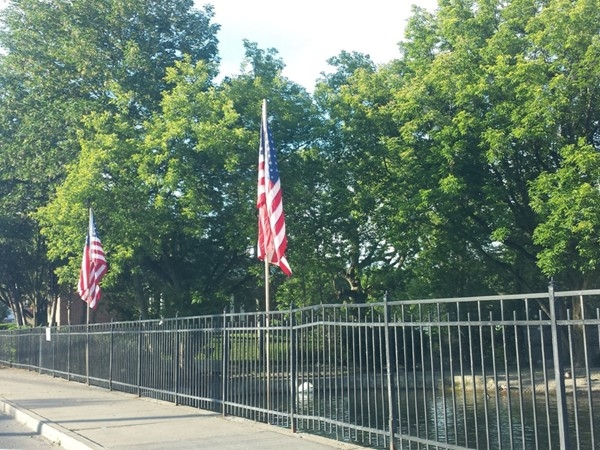 Flag Day at the Swan Pond