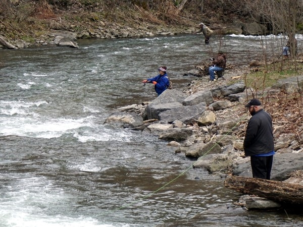 Nine Mile Creek is stocked with trout by Onondaga County.  A favorite place to fish for many