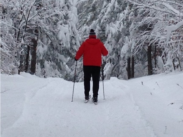 Some of the best groomed cross country ski trails in the Northeast are right in our backyard