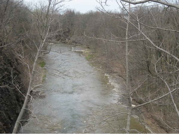 "Spectacular view from above of ""Eighteen Mile Creek"" in Hamburg!"