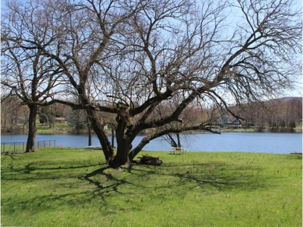 Beaver Dam Lake- open space