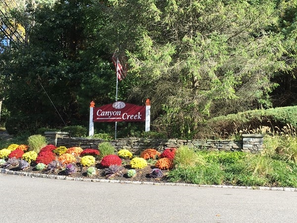 Picturesque entrance to Canyon Creek at Port Jefferson