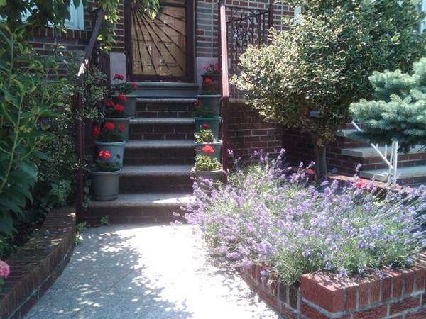 No, this is not the south of France! This is a house in Dyker! So refreshing and dreamy
