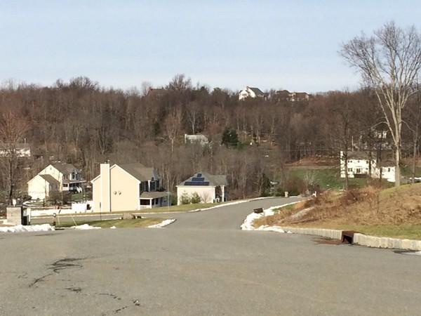 Street view of Sky View Manor