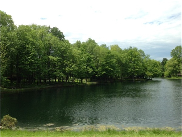 Willett's Pond – Corner of Willett Parkway and Drakes Landing - tranquil