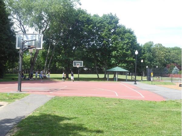 Patricia Lane Park:  tennis, basketball or baseball anyone?