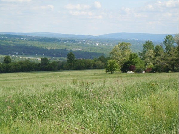 View from Lansingville Road back toward Ithaca