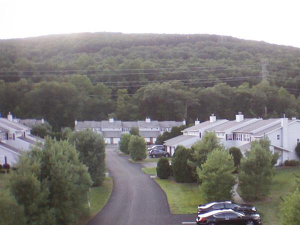 What a scenic neighborhood