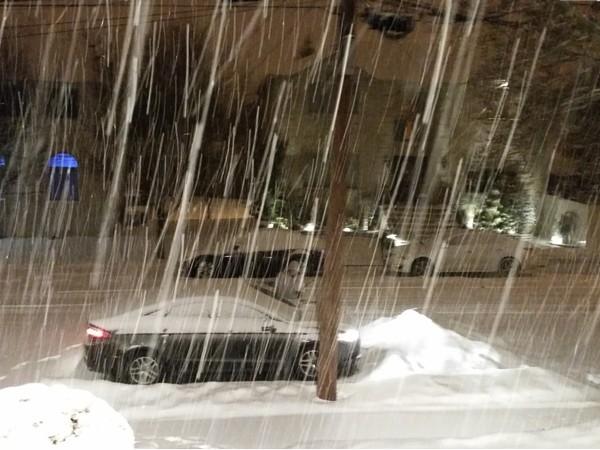 A snowy night in Annandale