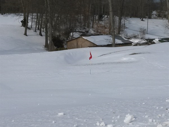 It's lonely being a green flag in winter