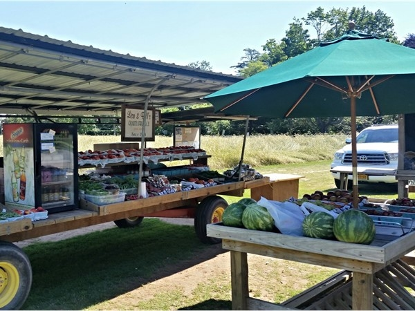 The best strawberries you can buy in the Hamptons are at Babinski farm