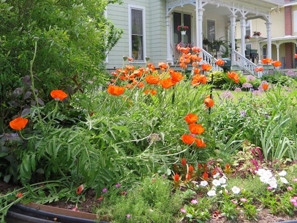 Beautiful flower gardens in front of this colonial home