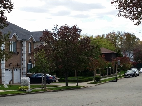 Beautiful homes in Annandale