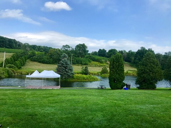 Millbrook Winery...beautiful and peaceful place to visit. Approximately 1 1/2 hours from NYC