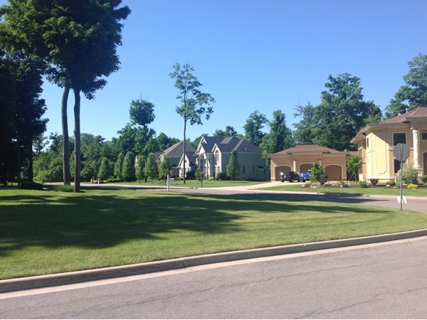 Incredible Spaulding Lake subdivision in Clarence. One of the most intriguing in Western New York