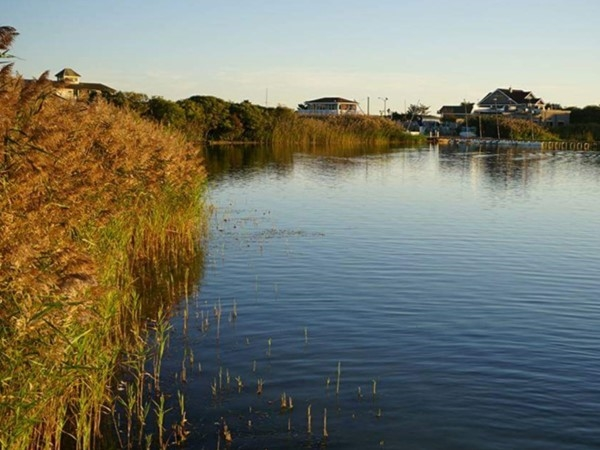 A view from Harvest on Fort Pond, Montauk