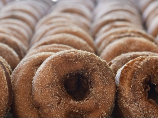 Harbes Family Farm famous Apple Cider Donuts