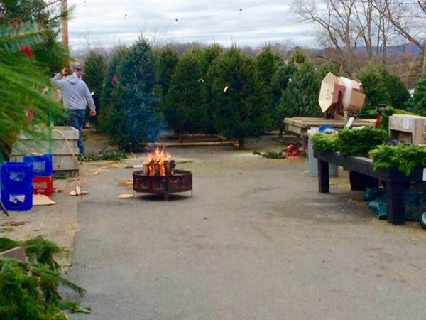 Keeping warm at Pennings Farms