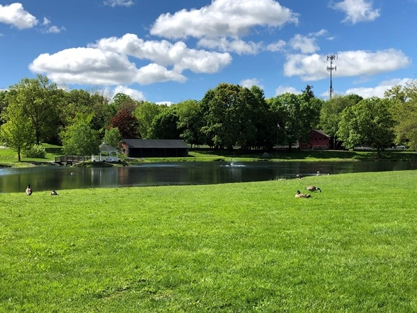 Perfect spring day. Blue skies, green grass and the tranquil fountain in the pond