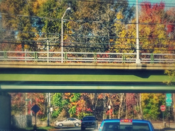 Richmond Parkway in Annandale