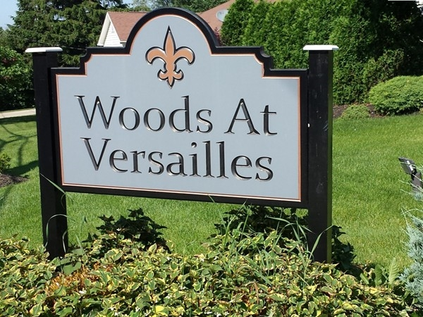 Build your dream home. Wooded lot and lots up to 1/2 acre are still available