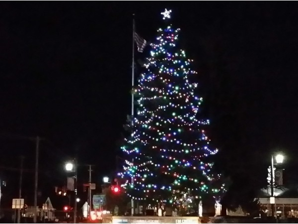 This huge tree is a centerpiece of Fayetteville's Christmas lights