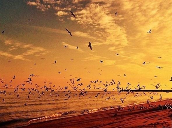 Superb sunset from South Beach, Staten Island
