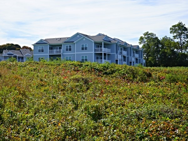 Condos with a water view in Greenport